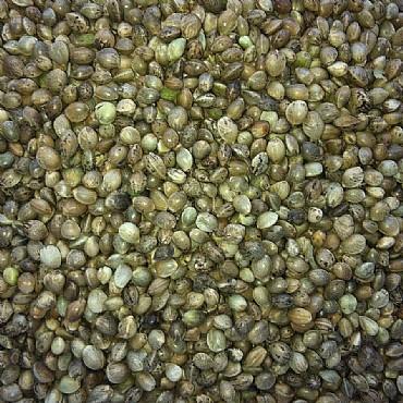 Hemp Seed oil, cold pressed, 200 ml / VEGAN